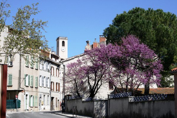 Vente Appartement CUGES LES PINS